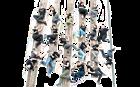 Dokumentarne---Ivanovski-Krume-Fotosofija_naslovna.png