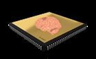 Znanstvenici-uzgojili-stanice-mozga-na-čipu.png