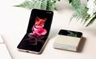 Samsung3_-Galaxy-Z-Flip3.jpg